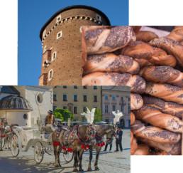 [:en]activities, landmark,holidays, tourism[:]